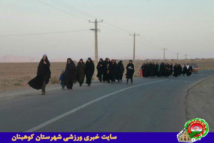 همایش پیاده روی روستایی به مناسبت هفته دولت