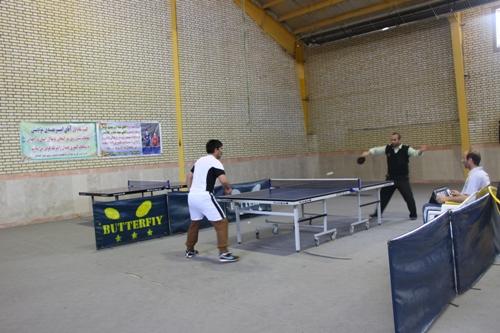 نتایج مسابقات تنیس روی میزکارمندان ادارات