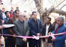 افتتاح خانه ورزش روستایی ،   روستای افزاد  بخش مرکزی شهرستان کوهبنان