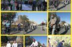 همایش دوچرخه سواری پدربزرگ های شهرستان کوهبنان به مناسبت هفته سالمند برگزار شد